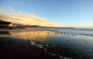 Cayucos-pier-project-california